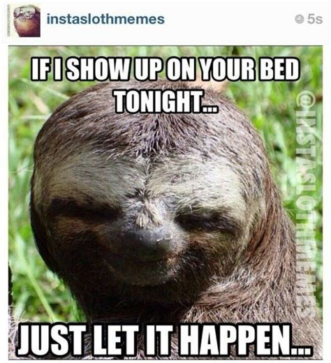 Creepy Sloth Meme - creepy sloth creepy sloth pinterest creepy sloth and sloth