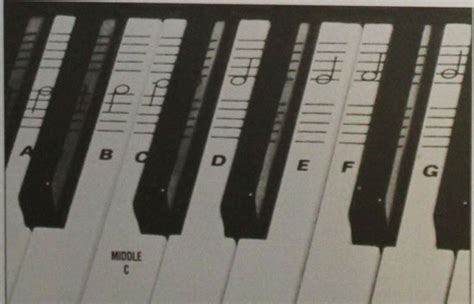 Piano Keyboard Decal Kit With Beginner Workbook Stickers