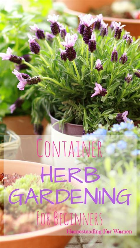 Gardening For Beginners by De 908 B 228 Sta Gardening Ideas Diy Bilderna P 229