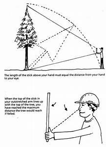 Distanzen Berechnen : estimating height of a tree driverlayer search engine ~ Themetempest.com Abrechnung
