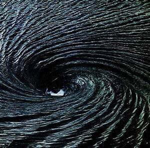 1000+ images about Fibonacci Swirls & Numbers on Pinterest ...