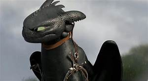 Toothless | YouTube Poop Wiki | Fandom powered by Wikia