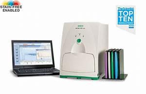 gel doctm ez gel documentation system life science With bio rad gel documentation system