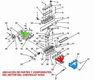 Diagrama De Ubicaci U00f3n De Partes Y Componentes Del Motor