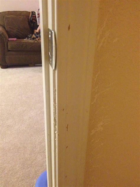 trim    repair scratches  door molding home
