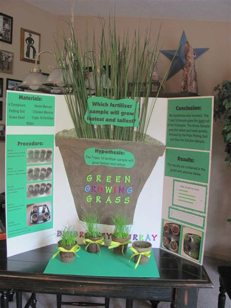 Science Fair Projects For Fourth And Fifth Graders Bnl