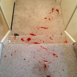 Hair dye stain on carpet floor matttroy for How to remove hair dye from wood floor