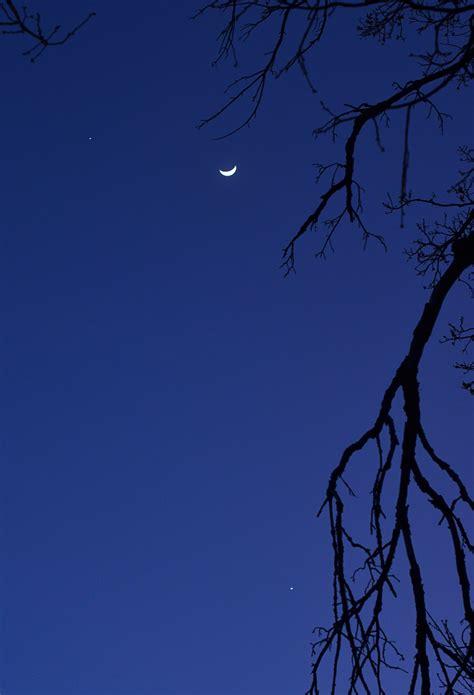 Venus's Major Moons - Pics about space
