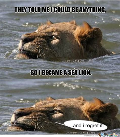 Lion Memes - 50 very funny lion meme pictures and images
