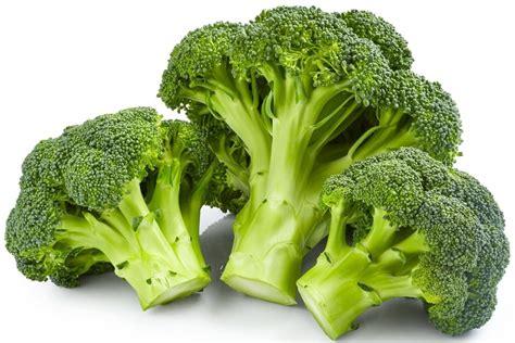 cuisiner des brocolis tout savoir sur le brocolis le choisir le cuisiner le
