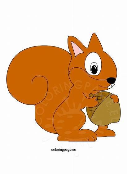 Squirrel Clip Clipart Autumn Cliparts Cartoon Coloring