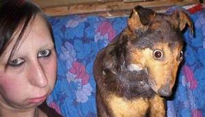26 Dogs That Look Like Their Owners 022 - FunCage
