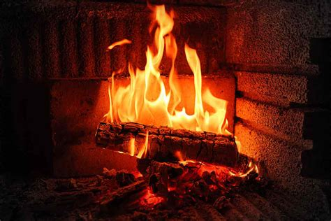 Never Burn These 6 Things In A Fireplace Best Pick Reports