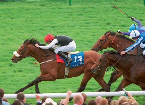 Al Adiyat: dubai horse racing magazine, UAE, Endurance ...