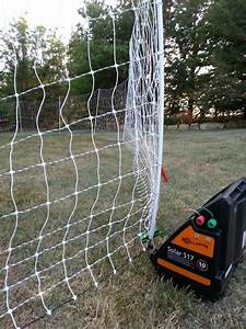 17 Best Images About Electric Fence On Pinterest