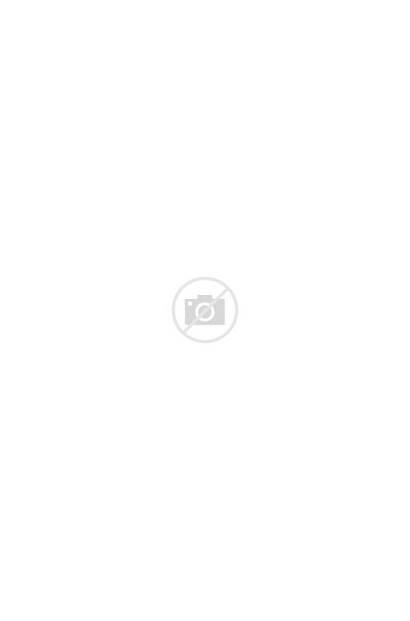 Dam Spillway Oroville Water Debris Plant Pile