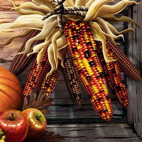 16 Best Thanksgiving Hd Wallpaper Images On Pinterest