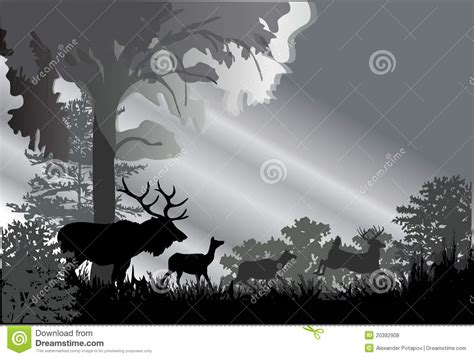 deer silhouettes  grey forest stock vector image