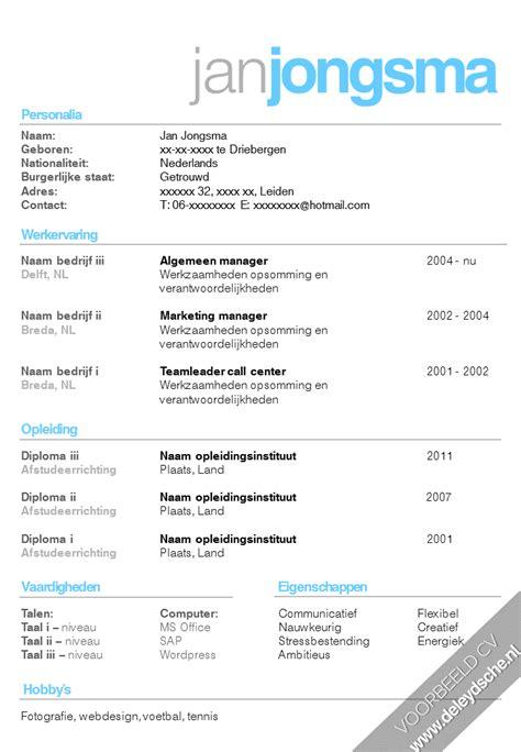 voorbeeld cvs infographic cv