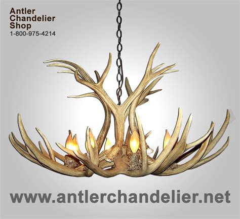 Antler Chandelier Shop by Real Antler Mule Deer Chandelier Mdsp1 Antler Chandelier