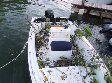 Boat Crash Miami by Mangrove Branch Impales Kills Key Largo After Boat