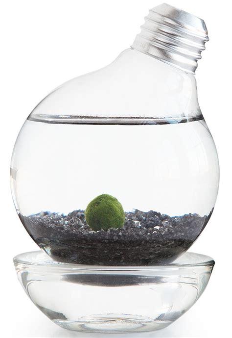 marimo moss ball light bulb aquarium gadgets matrix