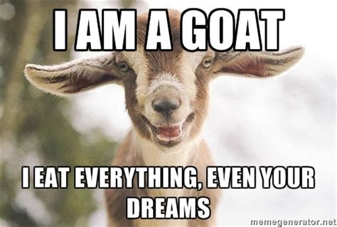 Goat Memes - gold will rebound in days and when it does page 235