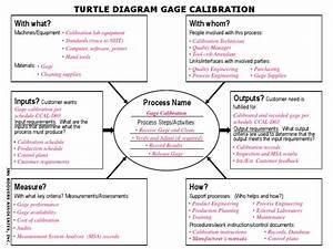 Turtle Diagram  Calibration