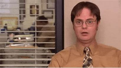 Dwight Office Amused Gifs Giphy Lol Shrute