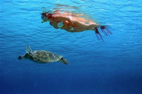 Lombok Dive Resort Dive Shop Lombok Sudamala Resorts