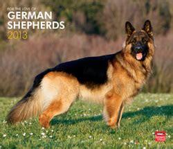 grooming  cleaning  love german shepherd dogs
