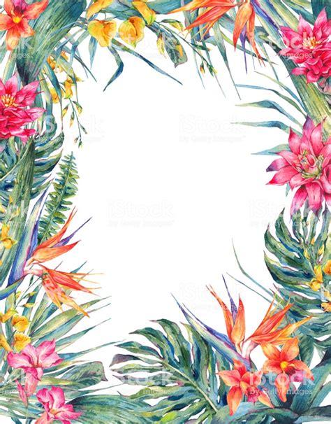 tropical floral frame template stock illustration