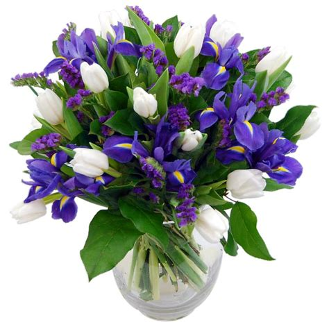 Blue Dew Bouquet  Fresh Iris Flowers Delivered Next Day