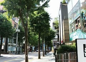 Centre Culturel Coréen : garosu gil of sinsa dong a street busy with fashion ~ Melissatoandfro.com Idées de Décoration