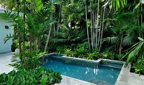 what to plant around a pool deshouse
