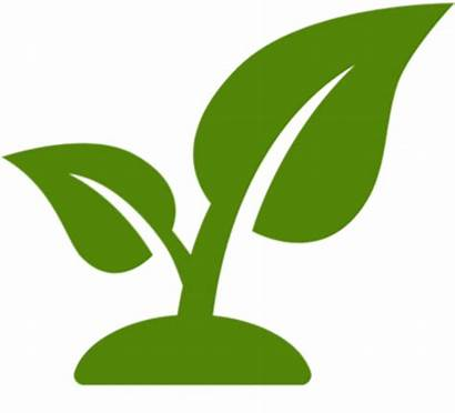 Landscape Icon Clipart Plant Landscaping Maintenance Pngkey