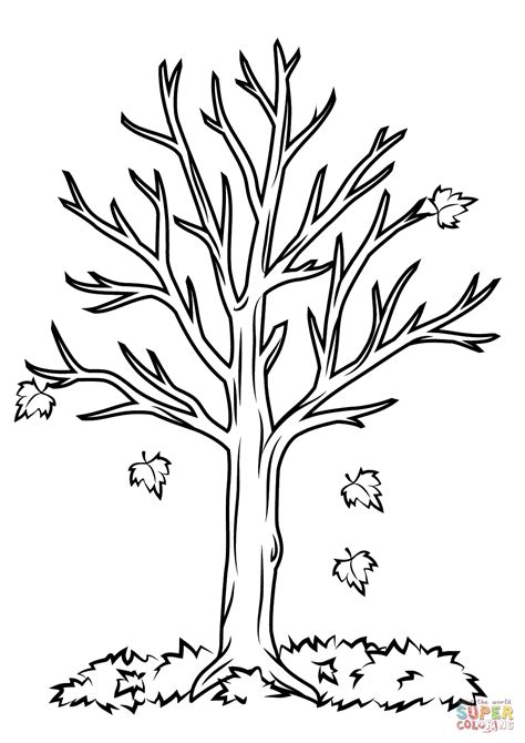 Tree Template Coloring Sheets by Fall Tree Coloring Page Free Printable Coloring Pages