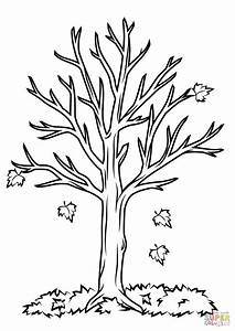 Fall Tree coloring page | Free Printable Coloring Pages