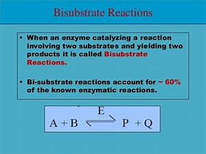 Bisubstrate Reactions Enzyme Kinetics