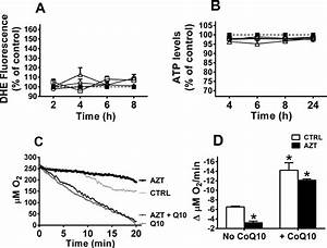 Effects Of Cotreatment Of Huvec With Coenzyme Q10 On Nrti
