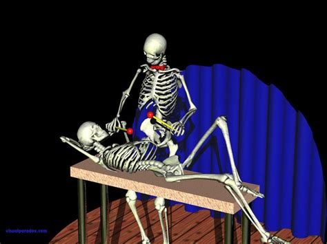 Skeleton Animated Wallpaper - skeletons xylophone performing play instrument stage