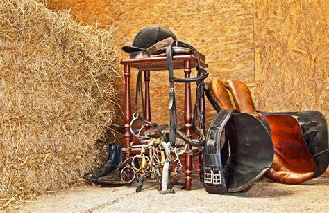 horse derbyshire shavings bedding