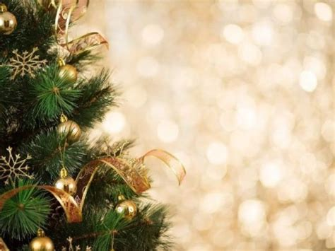 san diego s christmas tree recycling program ends monday