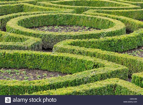 hedging stock  hedging stock images alamy