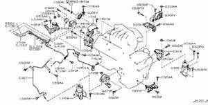 Nissan Sentra Vacuum Line  Awd  Mounting  Engine