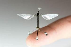 Disruptive Innovation Bioinspired Robotics 2 Materials Manufacturing Design