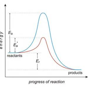 Catalyst and Activation Energy