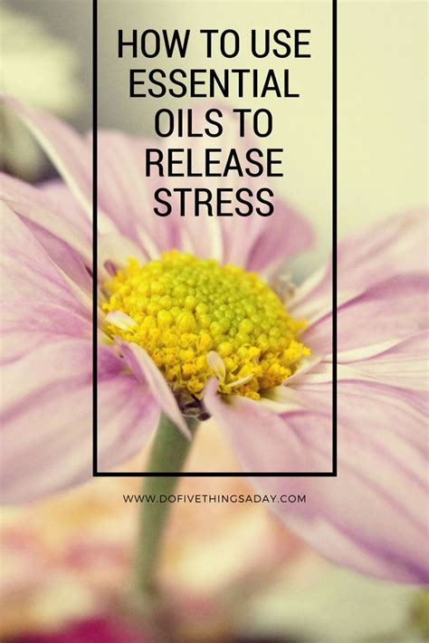 best 25 how to release stress ideas on