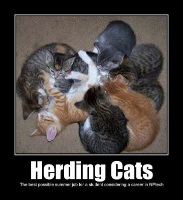 Herding Cats Meme - meme herding cats herding best of the funny meme