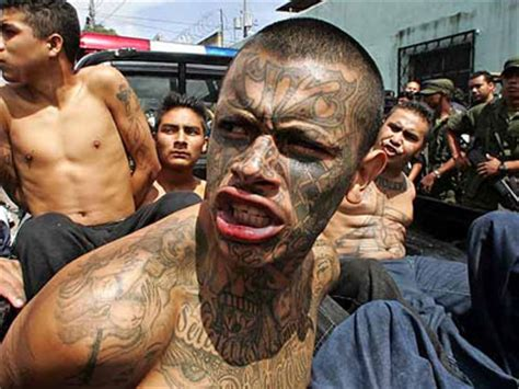 Image result for WHO IS MS-13